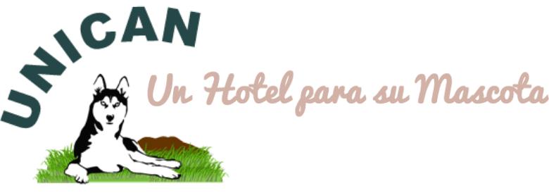 Mejor Hotel para Perros en Málaga