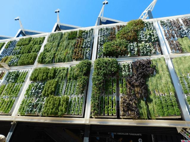 Mejores Empresas de Jardines Verticales en Málaga
