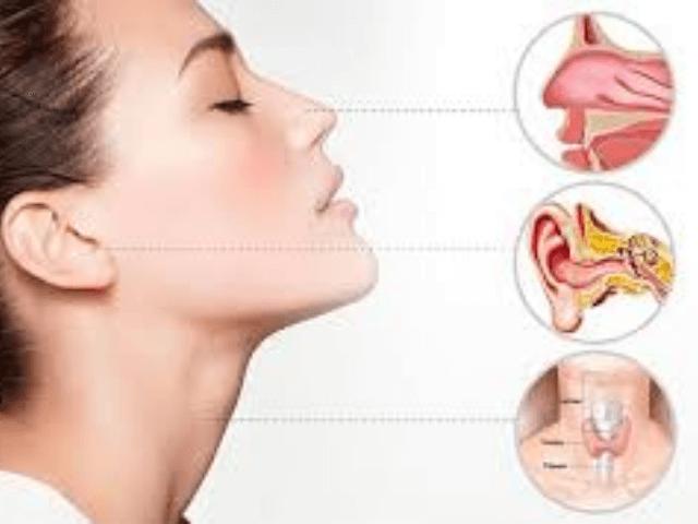 Mejores Médicos Otorrinolaringólogos en Málaga